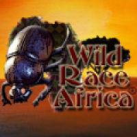 Wildrace Africa Tours and Travel - www.wildraceafrica.com