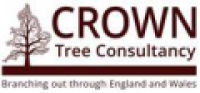 Crown Tree Consultancy - www.crowntrees.co.uk