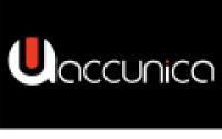 Accunica Digital Marketing Agency - www.accunica.com
