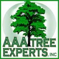AAA Tree Experts - www.aaatrees.net