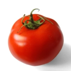 Lycopene is found in tomatoes