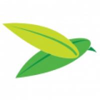 The Baya Company - www.thebayacompany.com