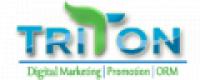 Triton Web Media - www.tritonwebmedia.com
