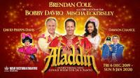 Aladdin, New Victoria Theatre, Woking