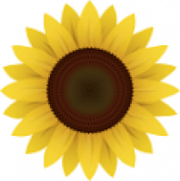 Sunflower Index - www.sunflower.capital
