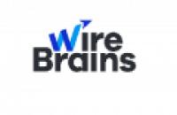WireBrains - www.wirebrains.com