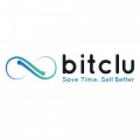 Bitclu Inc - www.bitclu.com