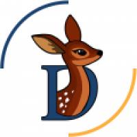 Doe'sInfotech Solutions - www.doesinfotech.com