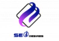 SEO Desires - www.seodesires.com
