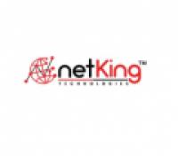 Netking Technologies - www.netkingtechnologies.com