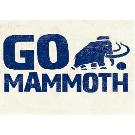 GO Mammoth - www.gomammoth.co.uk