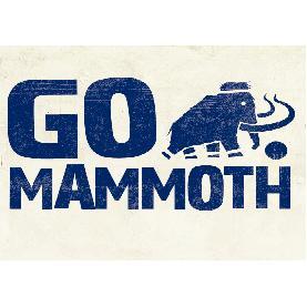 GO Mammoth - www.gomammoth.co.uk