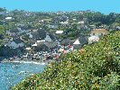 Cornwall, Cadgwith Cove Vine Cottage