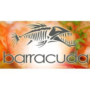 Barracuda Restaurant, Koh Tao, Thailand