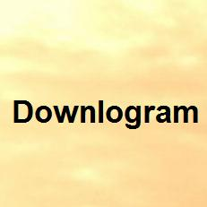 Downlogram - www.downlogram.com