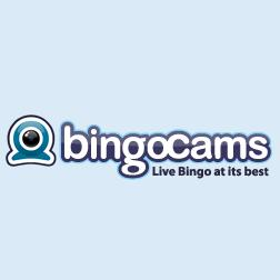 Bingocams - www.bingocams.co.uk