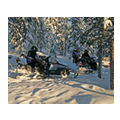 First Choice, Lapland Day Trips