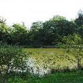 Acorn lake, France