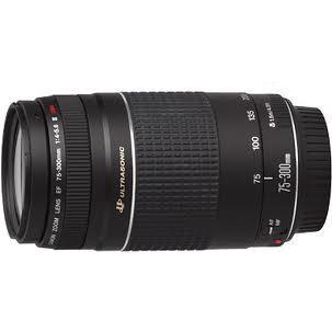 Canon EF 75-300mm f4.0-5.6 III Lens.jpg