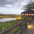 Masai Mara, Keekorok Lodge