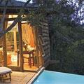 Garden Route - Plettenberg Bay Tsala Treetop Lodge