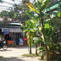 Siem Reap, Angkor Palm Garden Lodge