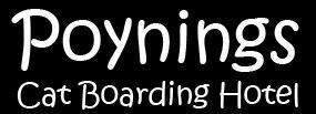 Poynings Cat Boarding Hotel