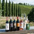 Montemaggio Organic Red Wine