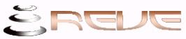 ReveSilkDirect Silk Bedding Store - www.revesilkdirect.com