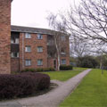 Freemens Common - Leicester University Accommodation