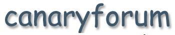 Canary Forum - www.canaryforum.com