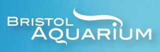 Bristol Aquarium - www.bristolaquarium.co.uk