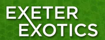 Exeter Exotics - www.exeterexotics.co.uk