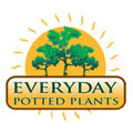 Everyday Potted Plants www.everydaypottedplants.com.au