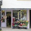 Lavender Blue, Ludlow