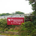 Penventon Nursery Lanner, Redruth, Cornwall
