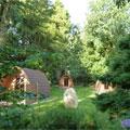 Langstone Manor Caravan & Camping Park, Tavistock