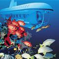 Grand Cayman, Atlantis Submarine Expedition