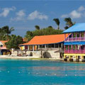 Divi Flamingo Beach Resort and Casino