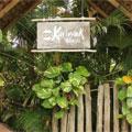 Kariwak Village Holistic Haven and Hotel