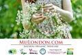 MuLondon - www.MuLondon.com