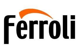 Ferroli Boiler