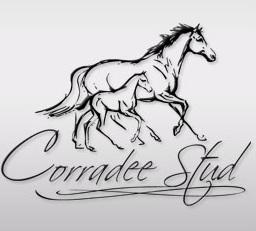 Corradee Stud - www.corradeestud.com