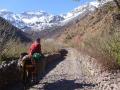 trekking in morocco - moroccotrekking.net