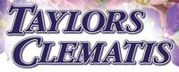 Taylors Clematis Nursery - www.taylorsclematis.co.uk