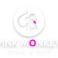 Pink Monkey Stag and Hen Ltd - www.pinkmonkeystagandhen.co.uk