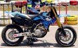 TM 250