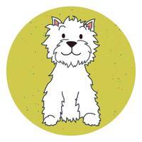 Catsash Boarding Kennels - www.catsashboardingkennels.co.uk