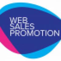 SEO Ireland websalespromotion.com - www.websalespromotion.com/seo-ireland/