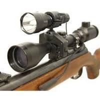 Clulite Red Eye LED Gun Light